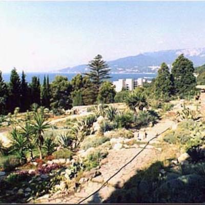 nikiticki ogrod botaniczny