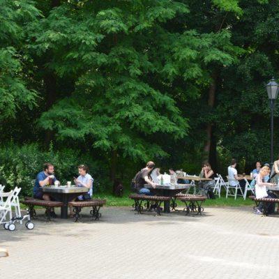 RC Łodz Centrum piknik stopa konsko-szpotawa (1)