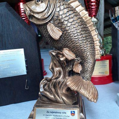 Zawody wędkarskie 2020 Woryny (9)