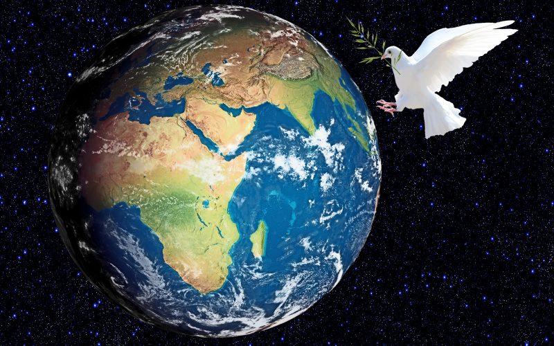 Rotary Peace Fellowship – stypendium dla liderów